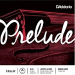 D'Addario J101144M Prelude 4/4 Cello A String